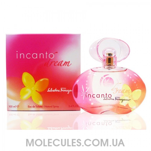 Salvatore Ferragamo Incanto Dream 100 ml
